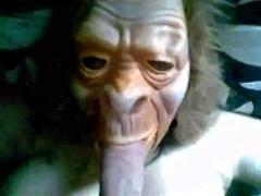 Monkey Porn Videos - Nonktube.com